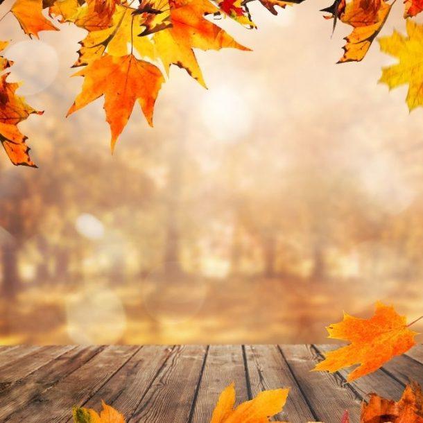 Jak wyglądać stylowo jesienią_